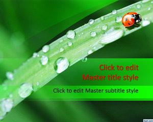Plantilla de PowerPoint de Ladybug gratis